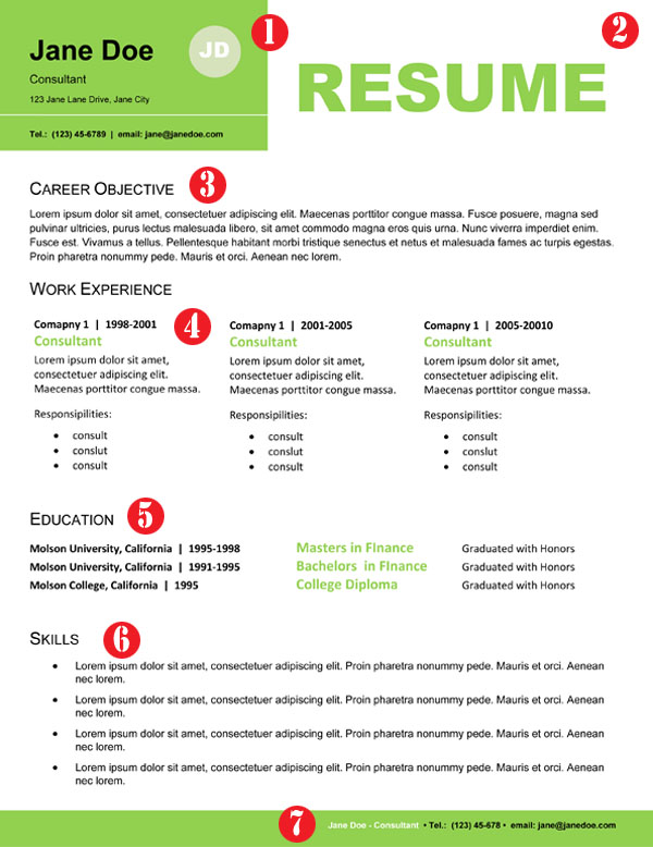 resume format resume format that stands out